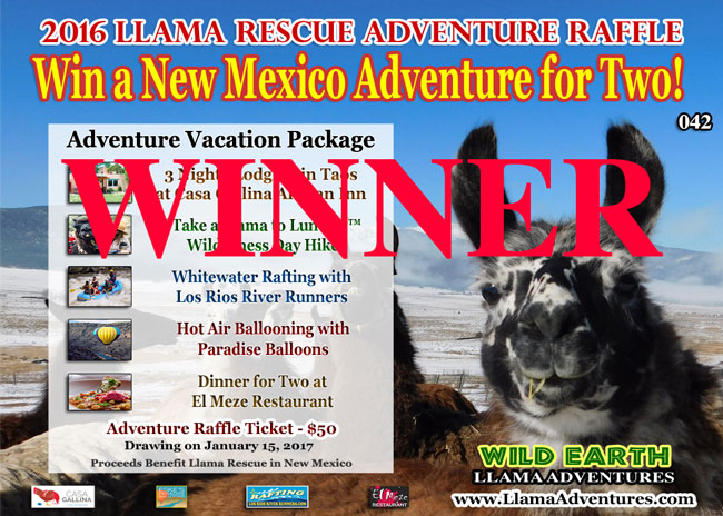 Adventure Raffle to Benefit Llama Rescue in New Mexico