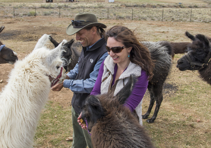 Leah and Stuart Wilde of Wild Earth Llama Adventures